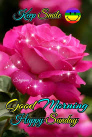 Good Morning Happy Sunday Greetings Quotes Good Morning Happy
