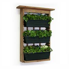 outdoor herb garden kit. Delighful Kit Algreen Products 34002 Garden View Vertical Living Wall Planter  Amazonca Patio Lawn U0026 Intended Outdoor Herb Kit H