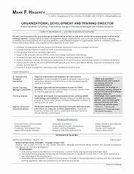 Resume Format Skills Amazing Skills Based Resume Format 44 Pdf Skills Based Resume Template