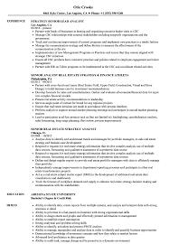 Strategy Analyst Senior Analyst Resume Samples Velvet Jobs