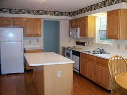 light unfinished kitchen cabinets