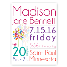 jds personalized gifts personalized baby girl announcement canvas art wayfair on personalized baby girl wall art with jds personalized gifts personalized baby girl announcement canvas