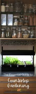 Indoor Kitchen Gardens Countertop Gardening For Every Kitchen Garden Therapy