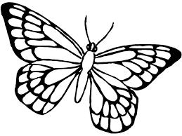 Disegni Da Colorare Della Farfalla Fredrotgans
