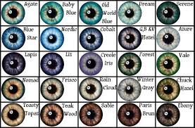 Iris Color Chart Eye Color Chart Google Search Eye Color Chart Writing