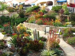 succulent garden ideas fancy idea succulent garden design extraordinary landscapes in county gardens succulent garden designs succulent garden