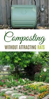 we all know composting is good for the garden and the environment but sometimes compost bins can also attract rats or other wildlife