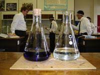 Blue bottle experiment lab report
