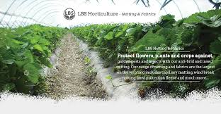 protect flowers plants and crops against garden pests and insects with our anti