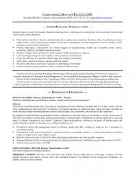 Internal Auditor Resume Objective Internal Resume Objective Krida 21