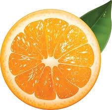 پرتقال PNG دانلود عکس (57 عکس)