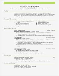Professional Resume Cover Letter Template Resume and Cover Letter Template Ideas Business Document 51