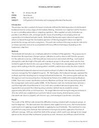 essay example report essay example