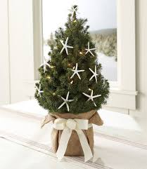 Best 25 Small Christmas Trees Ideas On Pinterest  Small Miniature Christmas Tree With Lights