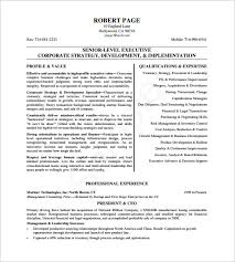 Ceo Resume Templates Ceo Resume Template 11 Free Samples Examples