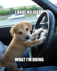 Image result for quotes about teaching a teen to drive