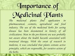 importance of medicinal plants essay definition paraphrasing  ayurveda