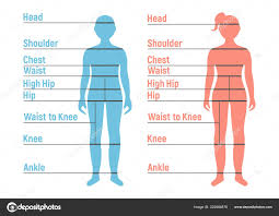 Boy Girl Size Chart Human Front Side Silhouette Isolated