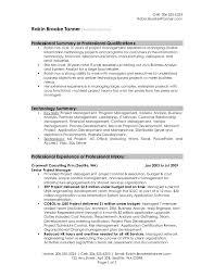 Professional Summary Resume Sample Alieninsidernet
