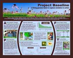 best ideas about research poster powerpoint better posters really good composition eye catching