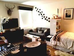 studio living room furniture. Furniture For Small Apartment. Apartment Ideas Home Studio Interior Design Spaces Living Room
