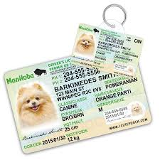 Manitoba License Driver Id And Cute Tags Personalized 1 Pet Card Wallet Pooch Dog
