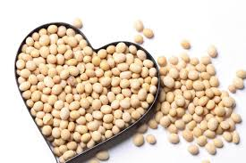 Image result for what are the products of soybean