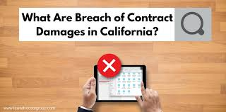 What Is Breach Of Contract In Business Lawsuits | Ophion.co