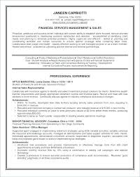 Best Professional Resume Format Simple Sample Professional Resume Format Administrativelawjudge