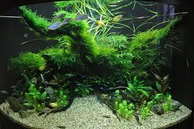 Mario Brothers Aquarium Decorations New Acrylic Wall Handing Aquarium Mirror Background Small Fish