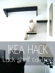 wall mounted cat furniture. Cat Wall Shelf Extraordinary Trees You Can Make Yourself Tree How To . Shelves Mounted Furniture C