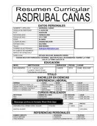 Formatos De Sintesis Curricular - April.onthemarch.co