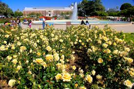 file exposition park rose garden exposition blvd at vermont ave university park 14 jpg