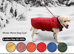 Warm Quilted Reflective Dog Jacket – KaboodleWorld & ... Warm Quilted Reflective Dog Jacket-KaboodleWorld Adamdwight.com