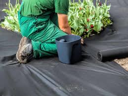 using plastic sheeting for weed control