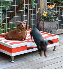 Diy Pvc Dog Bed Cool Outdoor Dog Beds That Are Also Comfortable ...
