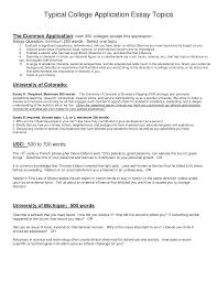 best college essays best college essay ever org best college application essay questions