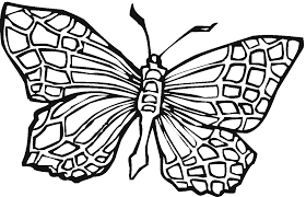 Small Picture Butterfly Coloring Pages Free Coloring Pages Pertaining To