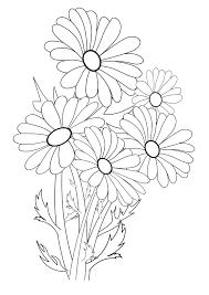 植物の無料塗り絵一覧