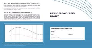 Peak Flow Reading Chart Peak Flow Pef Diary For Patients