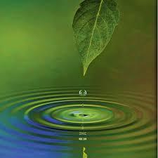 Artland Glasbild James Steidl Wassertropfen Otto
