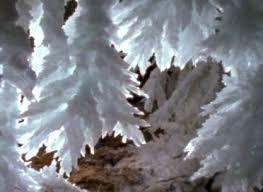 white stalactites