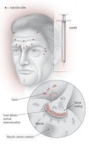 Skin Care and Repair - Harvard Health Business Blog