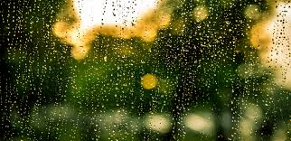 Image result for images rain