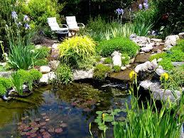 Pond Edges Design Pond Border Plants Garden Design Ideas