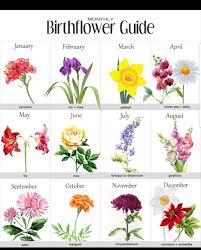 Official Birth Flower Chart Birth Month Flower Chart For Tattoos Birth Flower