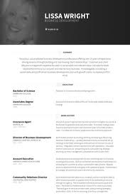 Insurance Sales Associate Sample Resume Sales