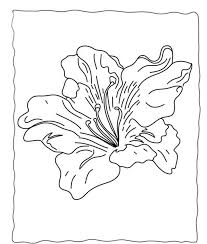 Flowers Coloring Pages Preschool Flower Coloring Pages Of