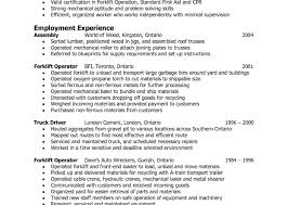 healthcare project manager resume customer service resume description