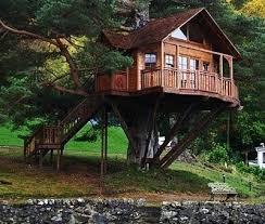 Save tree house unique designs picture ...